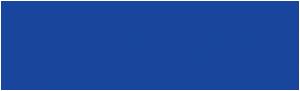 Ansisa Logo